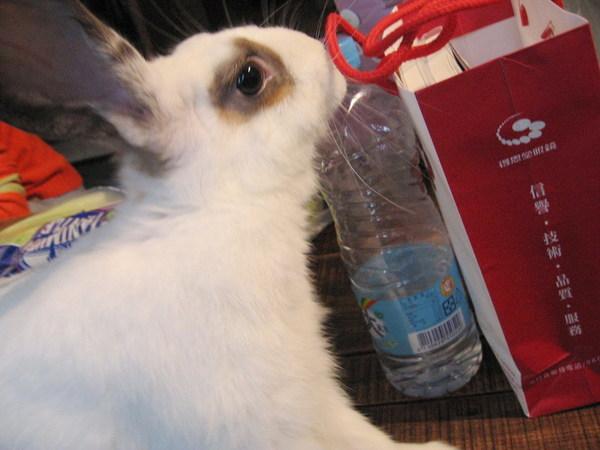 2007.12.1芽芽:我喝水