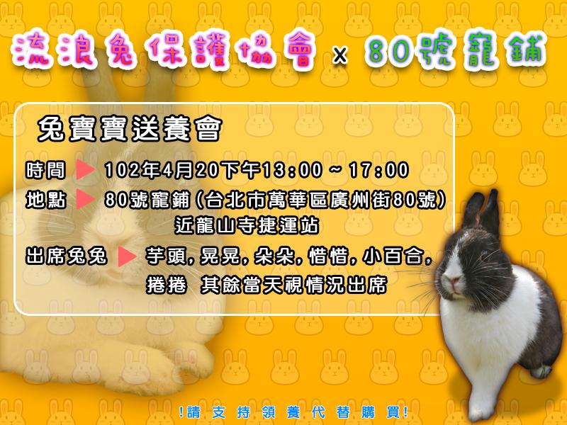 4_20_流浪兔