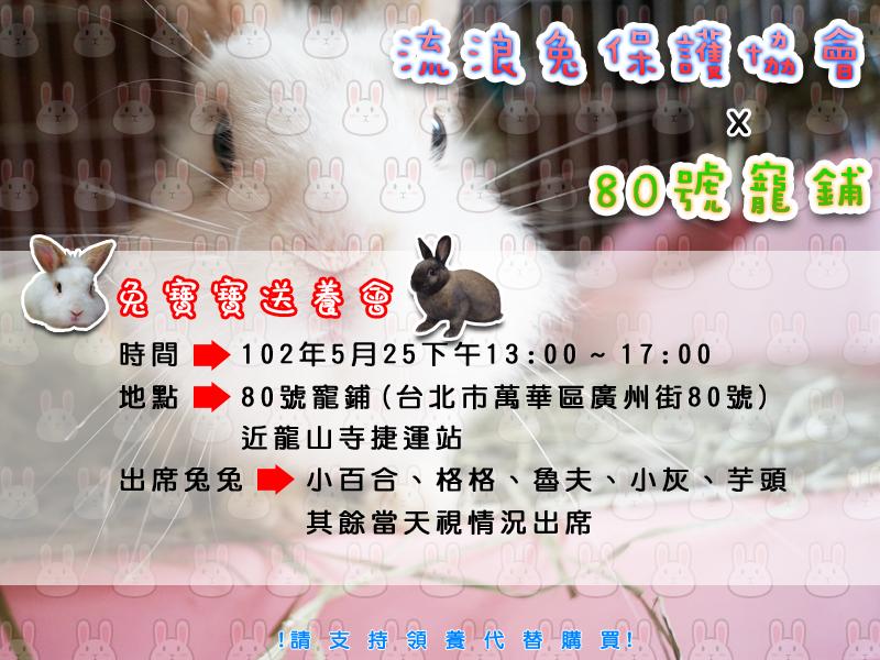 5_25_流浪兔