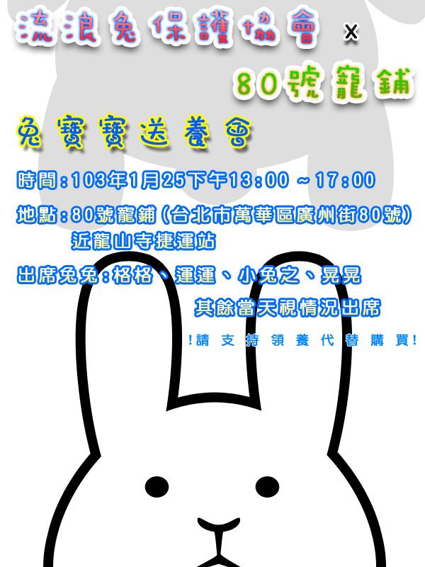 01_25_流浪兔