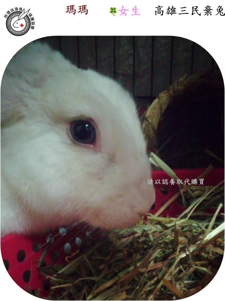 PhotoCap_001.jpg