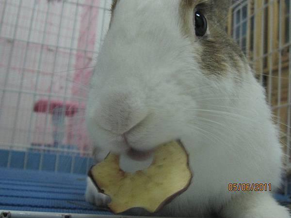 最愛小蘋果~.jpg