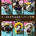 (8)_1_小淘氣&小乖.jpg