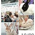 (37)保平&大蘿蔔&五福.jpg