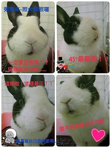 八寶粥(9).jpg