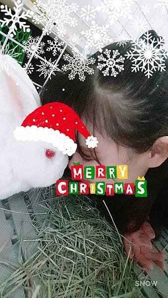 小妮子(15).jpg