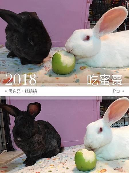 黑狗兄、魏拐拐(阿莓)(23).jpg