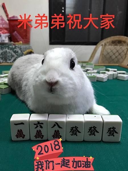 米弟弟(中興米)(35).jpg