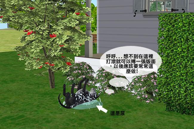 奇瑞分家3 (5).jpg