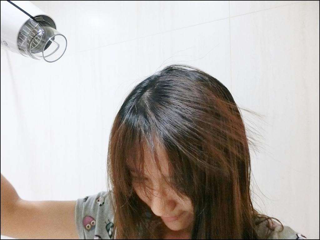 Sheng Yih沙龍級雙負離子護髮大風量吹風機9.JPG