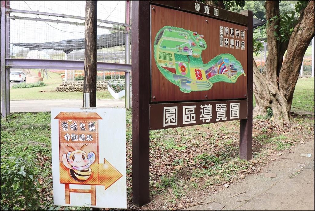 大溪花海農場65.JPG