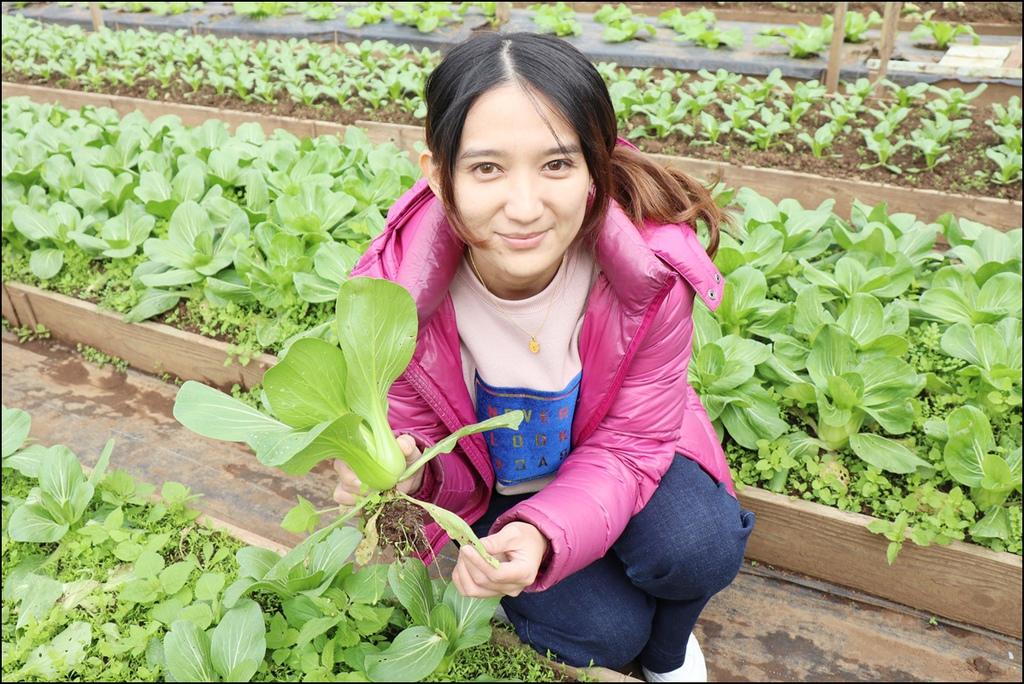 大溪花海農場IMG_6552-1.JPG
