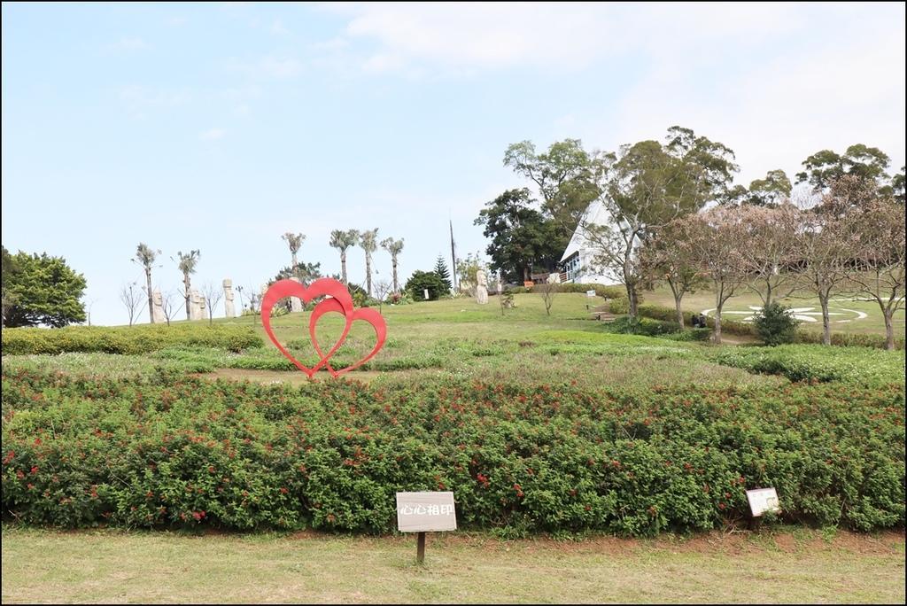 大溪花海農場19.JPG