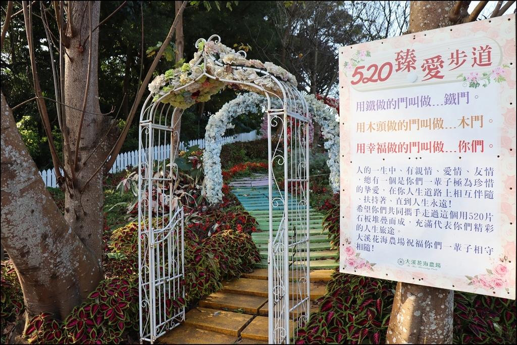 大溪花海農場61.JPG