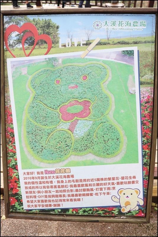 大溪花海農場4.JPG