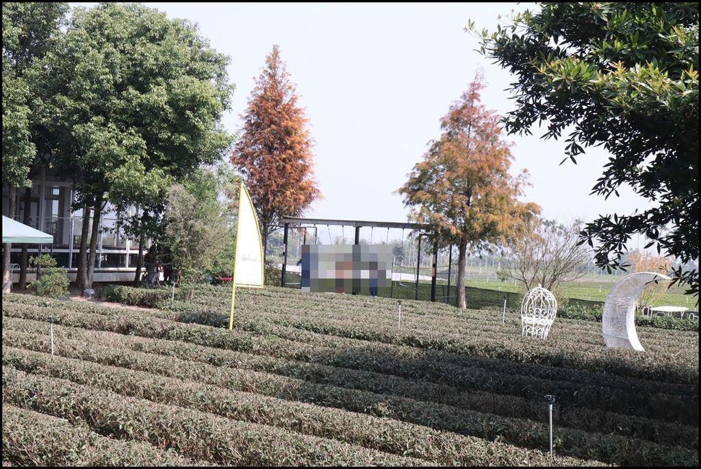 茶二指故事館56.JPG