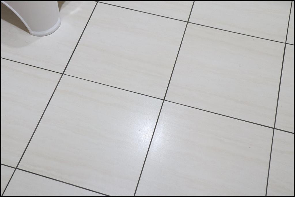 Castle家適多植淨驅蟲地板清潔劑19.JPG