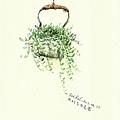 壺中的綠之鈴