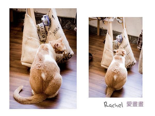 愛畫畫rachel05 - 複製.jpg