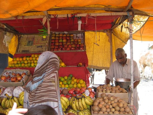 2009 印度旅遊 164.jpg