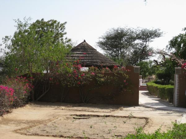 2009 印度旅遊 226.jpg