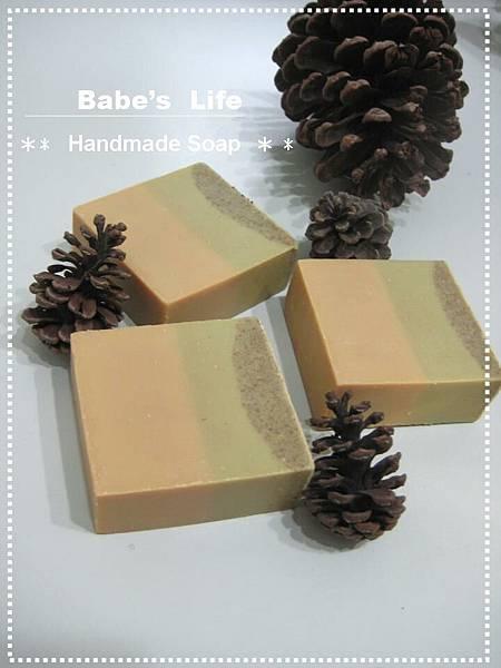 No111 鳳梨蘆薈皂