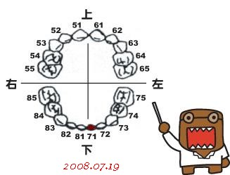 6m7d-小白71