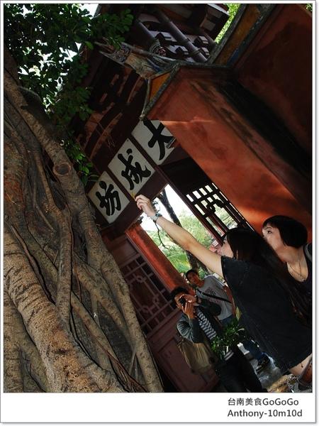 台北人比較少看到松鼠啦