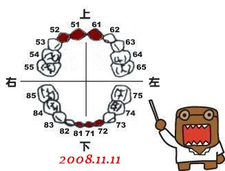 0Y9M-小白72