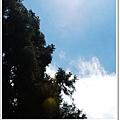 到底是哪門子的氣象報導...這裡是酷暑天耶