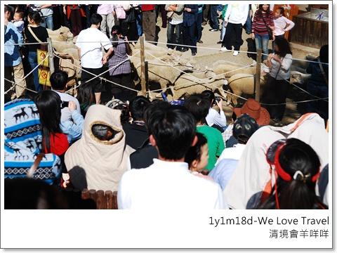一會兒功夫羊群又衝進人群中