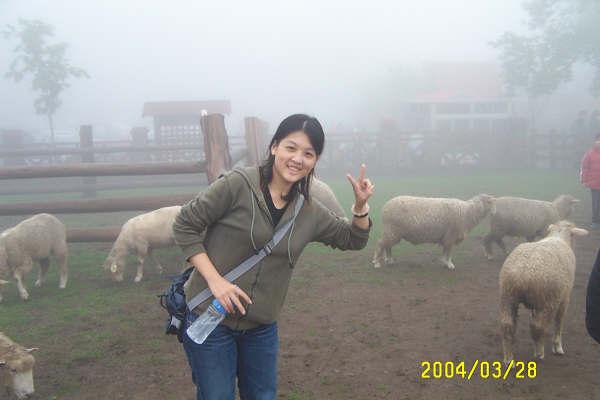 清境農場94.JPG