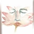 into lotus.jpg