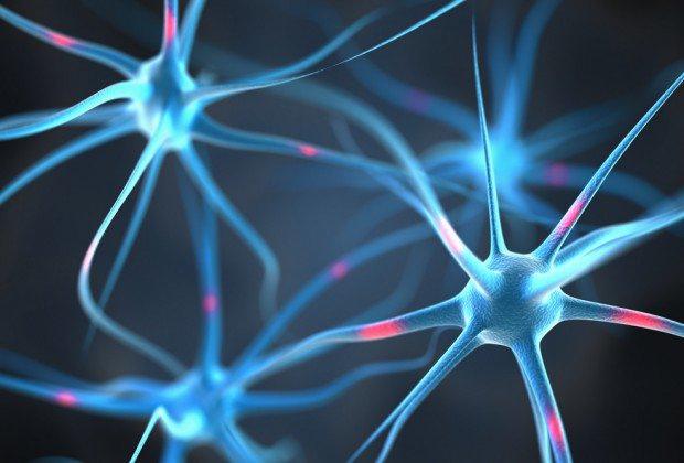 neurons-620x420
