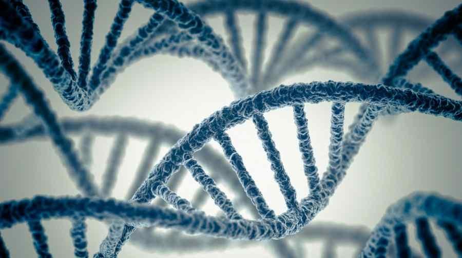 Genome (1)
