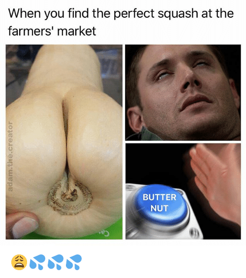 butternut squash pic