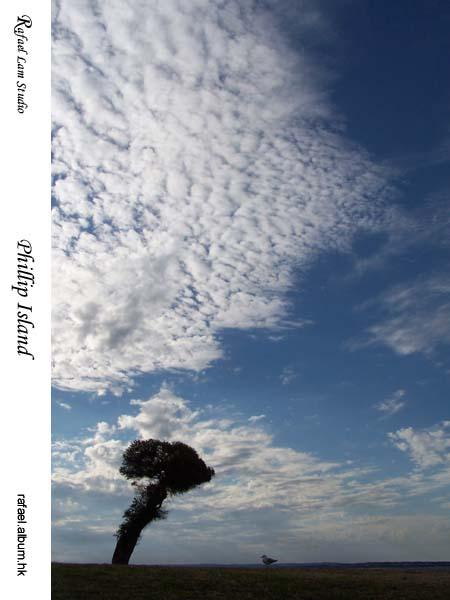 11. Phillip Island