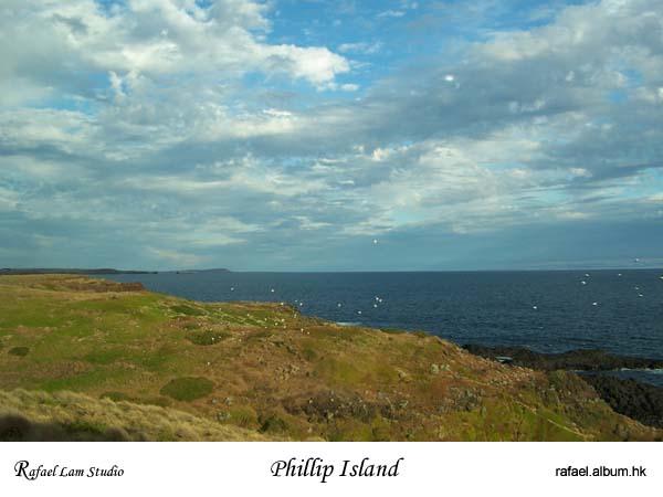 17. Phillip Island