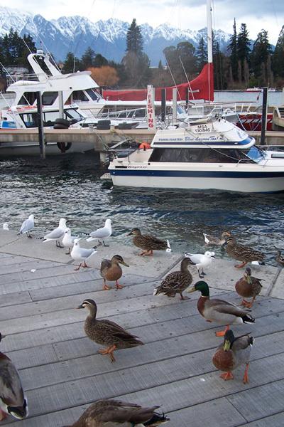 26.07.2007 Queenstown 25.jpg