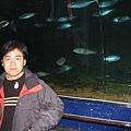 7.08.2007 Auckland 21 Kelly Tarlton's Underwater World.JPG