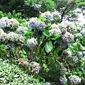 29Jul08 East Imperial Garden 08.jpg