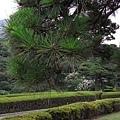 29Jul08 East Imperial Garden 16.jpg