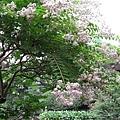 29Jul08 East Imperial Garden 21.jpg
