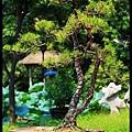 31 Foshan Liang's Garden.jpg