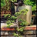 33 Foshan Liang's Garden.jpg