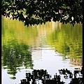 48 Foshan Liang's Garden.jpg