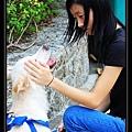 6. Milk Tea play with a little girl.jpg