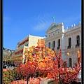 CNY Macau 09  (8).jpg
