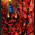 CNY Macau 09  (44).jpg