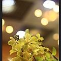 Orchid 09 (66).jpg